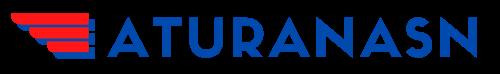 Aturanasn.id